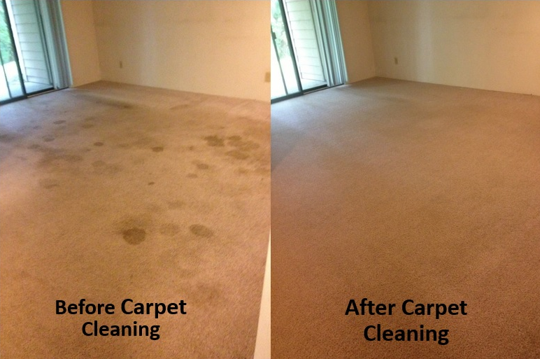 Gallery pacepro 217 417 2255 for Interior care carpet cleaning bend