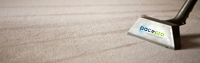 champaign-carpet-cleaning-services