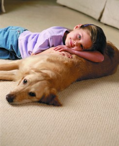 Girl and dog on clean carpet