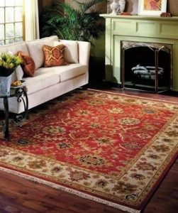 Oriental Area Rug Cleaning Champaign-Urbana